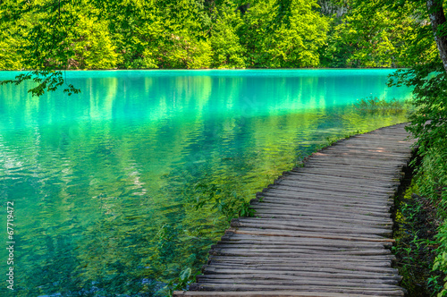 Poster de jardin Vert corail Pond at Plitvice Lakes National park in Spring