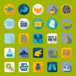 Set of veterinary flat icons