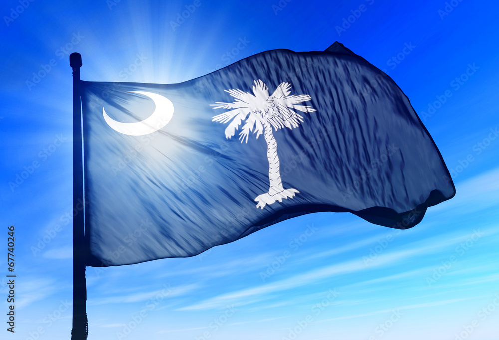 Fototapety, obrazy: South Carolina (USA) flag waving on the wind