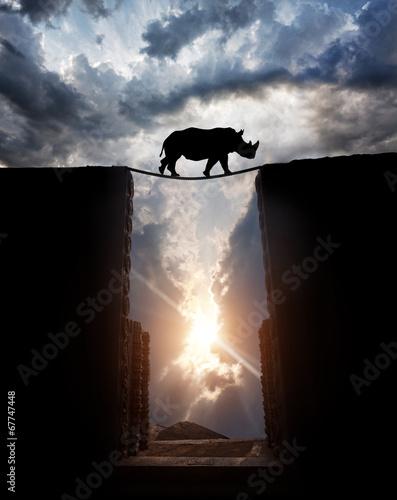 Poster Rhino Rhino over the abyss
