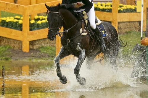 La pose en embrasure Equitation Rappe im Wasserhindernis