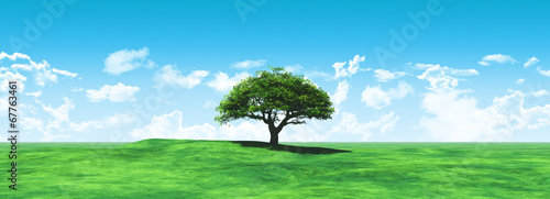 Aluminium Prints Blue Widescreen tree landscape