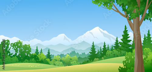 Foto op Aluminium Blauw Mountain forest