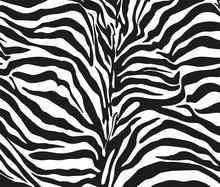 Zebra 2207