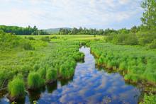 Stream Flowing Through Rural Maine
