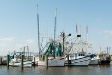 Shrimp Boats At Dock USA Gulf Coast
