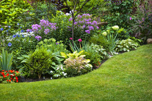 Garden And Flowers