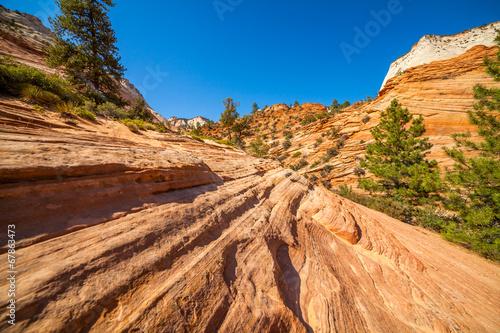 Fotobehang Natuur Park Red rock in Utah, USA