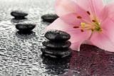 Fototapeta Kamienie - Mokre kamienie bazaltowe z lilią