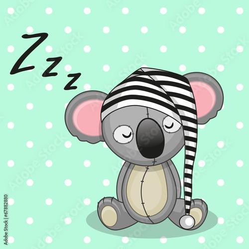 spiaca-koala