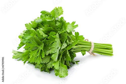 Fotografía  Parsley aromatic herb