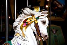 White Carousel Horse Head In Shadows