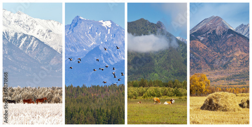 Fotografie, Tablou  Collage. Mountain scenery of four seasons