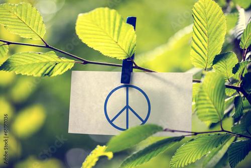 Photo  Peace concept