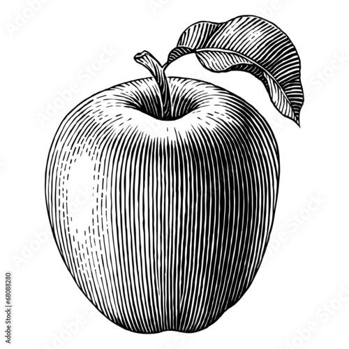 Valokuvatapetti Engraved apple