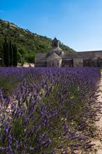 Abbaye De Carennac