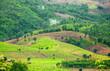 Hillside Field