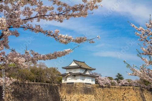wisniowe-kwiaty-w-zamku-osaka-w-japonii