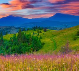 Fototapeta Do gabinetu lekarskiego/szpitala Beautiful summer sunrise in the mountain village