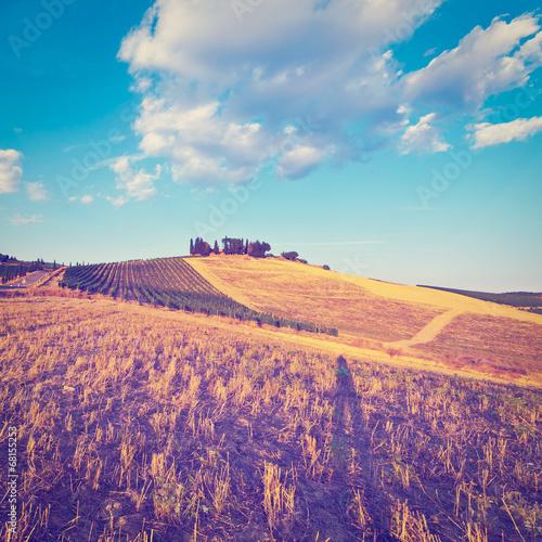 In de dag Snoeien Landscape