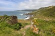 Devon coastline in spring