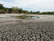 Severe Drought Conditions