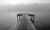 Туманное утро на пруду - 68193296