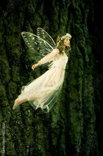Fotografie, Tablou  Flying fairy