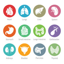 Vector Icon Set Of Human Inter...