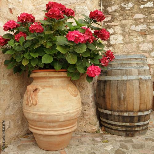 kwitnace-hortensje-w-eleganckim-ceramicznym-wazonie-w-wiosce-spello