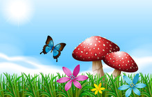 A Butterfly Near The Red Mushrooms
