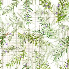 Fototapetaseamless texture of rosemary