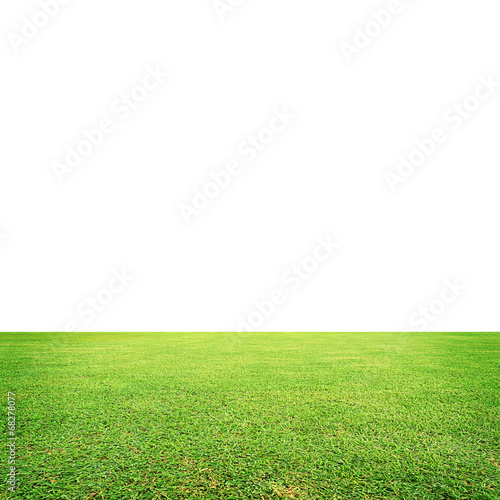 Fototapety, obrazy: meadow with white space