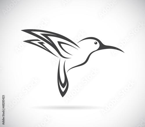 Fotografía Vector of hummingbird design. Bird. Animals.