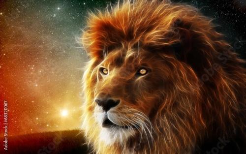 tajemniczy-lew