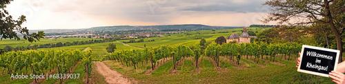 Wall Murals Vineyard Willkommen im Rheingau! Panorama mit Schloss Vollrads