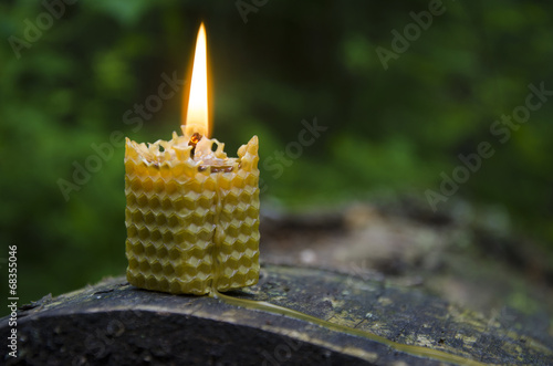 Photo Burning beeswax candle on old log