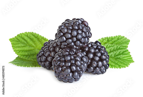 Fotografija  blackberry isolated on white background