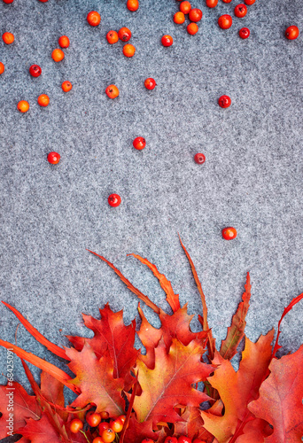 Printed kitchen splashbacks Autumn background . Rowan and leaves