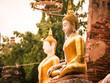 Seated buddha in Wat Phu Khao Thong. Ayutthaya,Thailand.