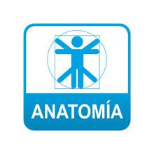 Etiqueta Tipo App Azul ANATOMIA