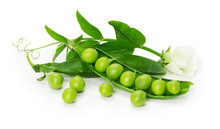 Green Peas In Shell Isolated O...