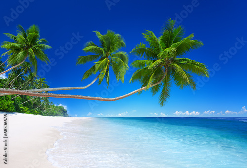 Staande foto Strand Tropical Paradise with Coastline Background