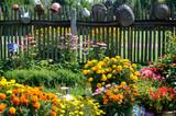 Fototapeta Kwiaty - In the garden
