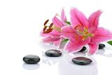 Fototapeta Kamienie - Kamienie bazaltowe z różowymi liliami
