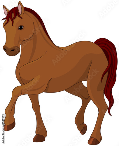 Printed kitchen splashbacks Fairytale World Purebred horse