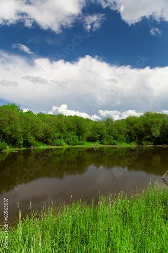Fototapeta Pond, trees and blue sky obraz na płótnie