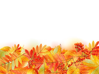 Autumn background with leaves. Back to school.