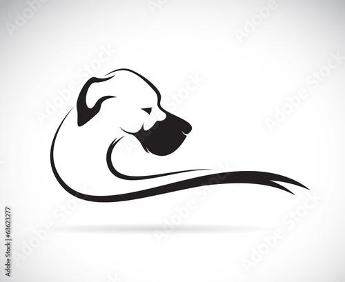 Fototapeta Vector image of an dog (great dane) obraz