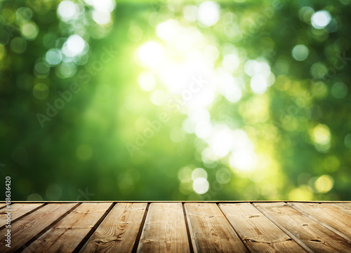 Fotografia  wooden surface and sunny forest
